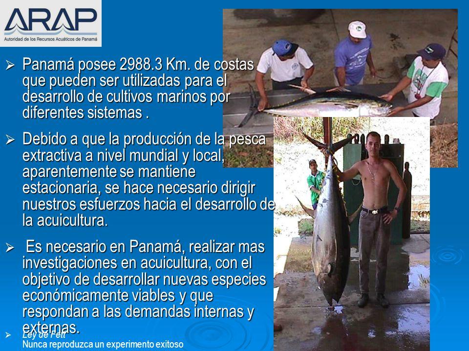 Panamá posee 2988.3 Km. de costas que pueden ser utilizadas para el desarrollo de cultivos marinos por diferentes sistemas .