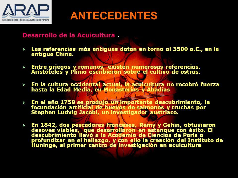 ANTECEDENTES Desarrollo de la Acuicultura .