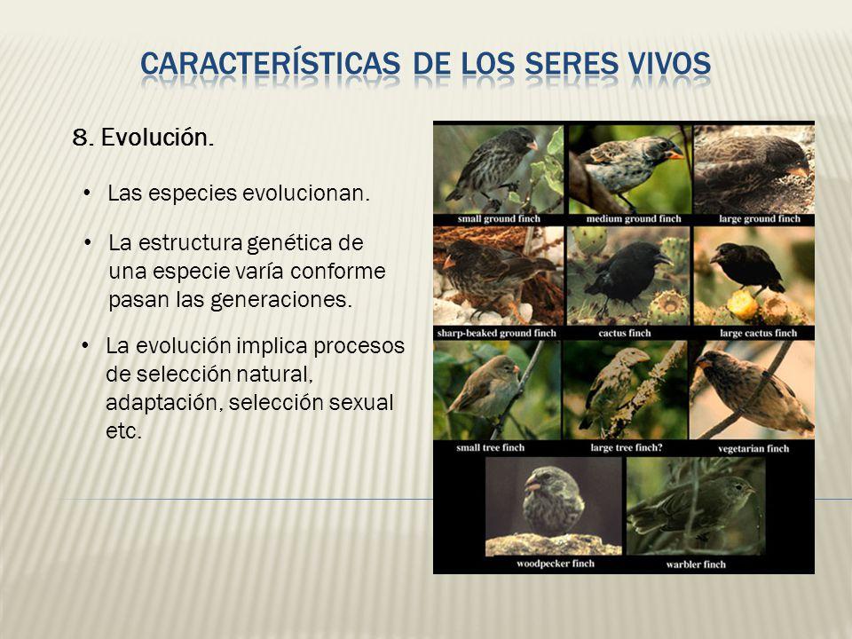 Características de los seres vivos