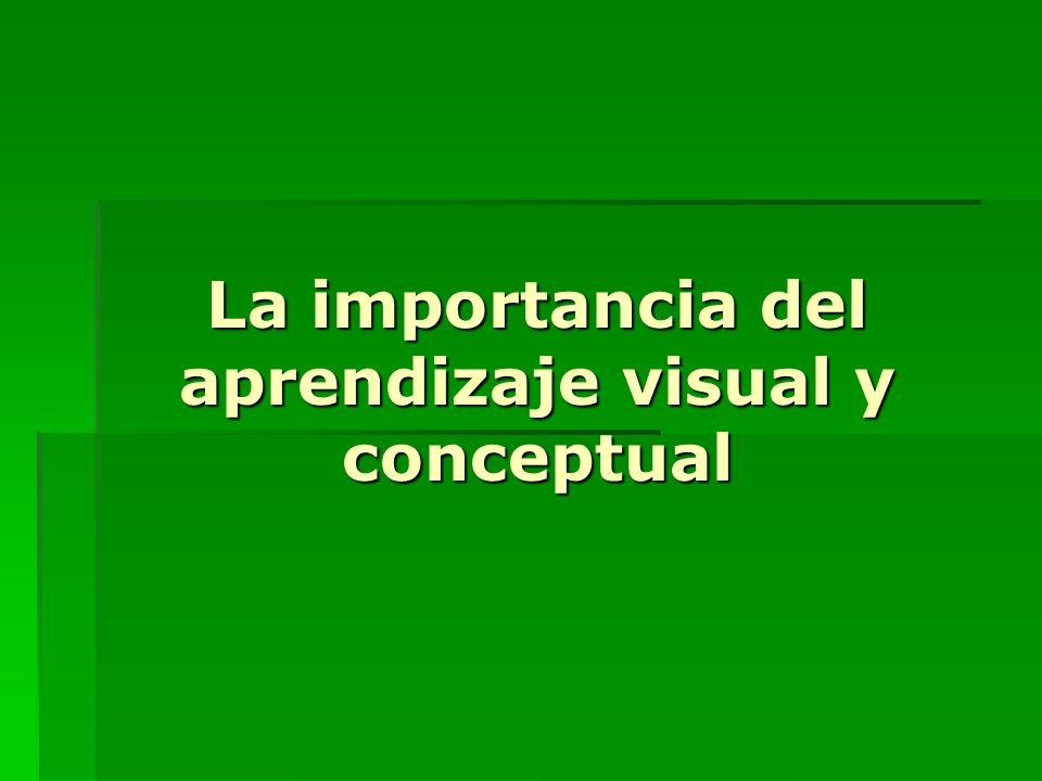 La importancia del aprendizaje visual y conceptual