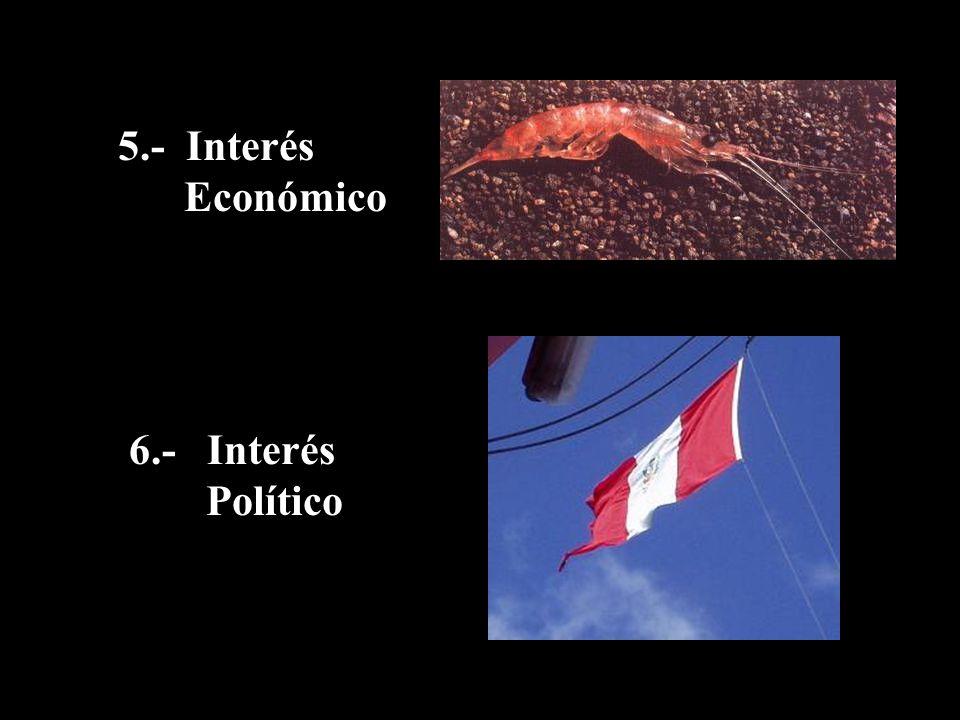 5.- Interés Económico 6.- Interés Político