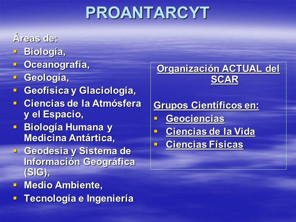Organización ACTUAL del SCAR