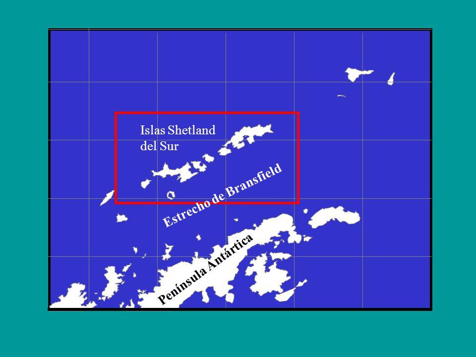 Península Antártica Islas Shetland del Sur Estrecho de Bransfield