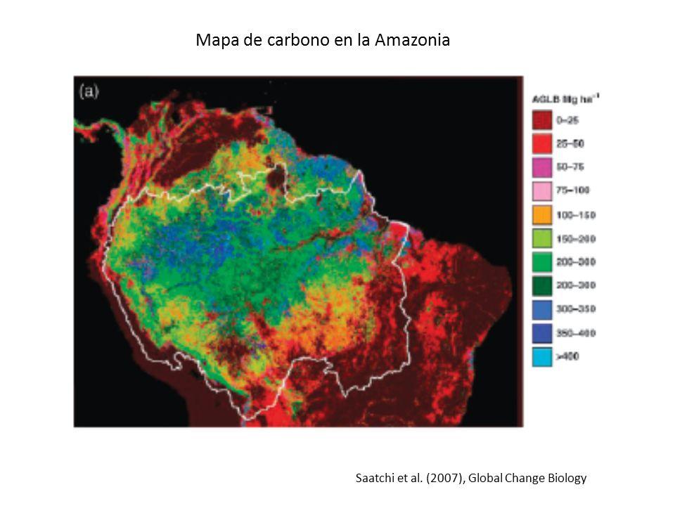 Mapa de carbono en la Amazonia