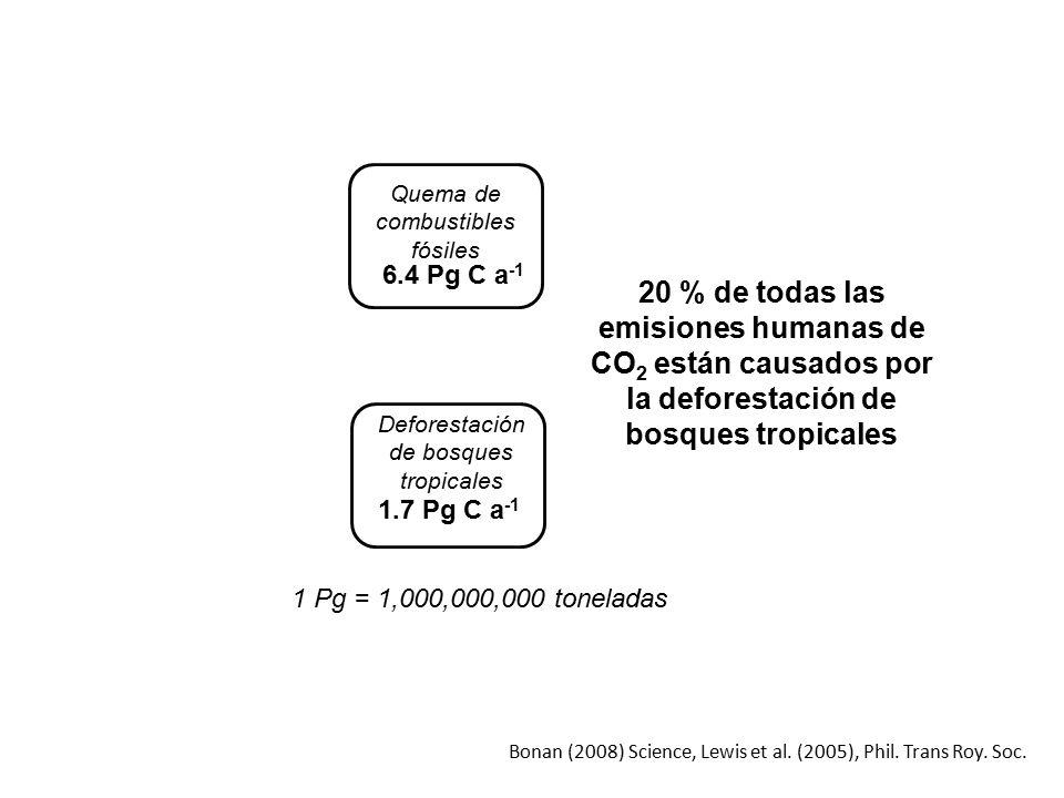 6.4 Pg C a-1 Quema de combustibles fósiles. 20 % de todas las emisiones humanas de CO2 están causados por la deforestación de bosques tropicales.