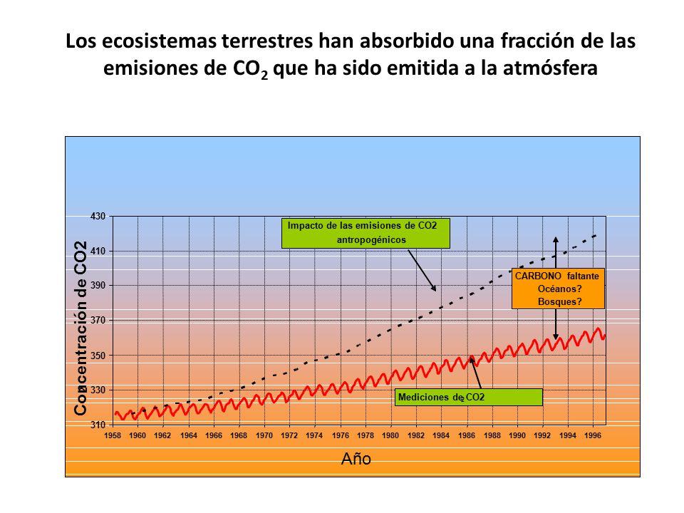 Los ecosistemas terrestres han absorbido una fracción de las emisiones de CO2 que ha sido emitida a la atmósfera