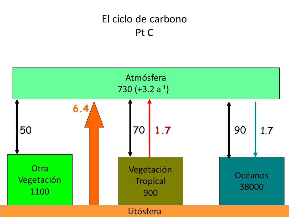 El ciclo de carbono Pt C Atmósfera 730 (+3.2 a-1) 6.4 50 70 1.7 90 1.7