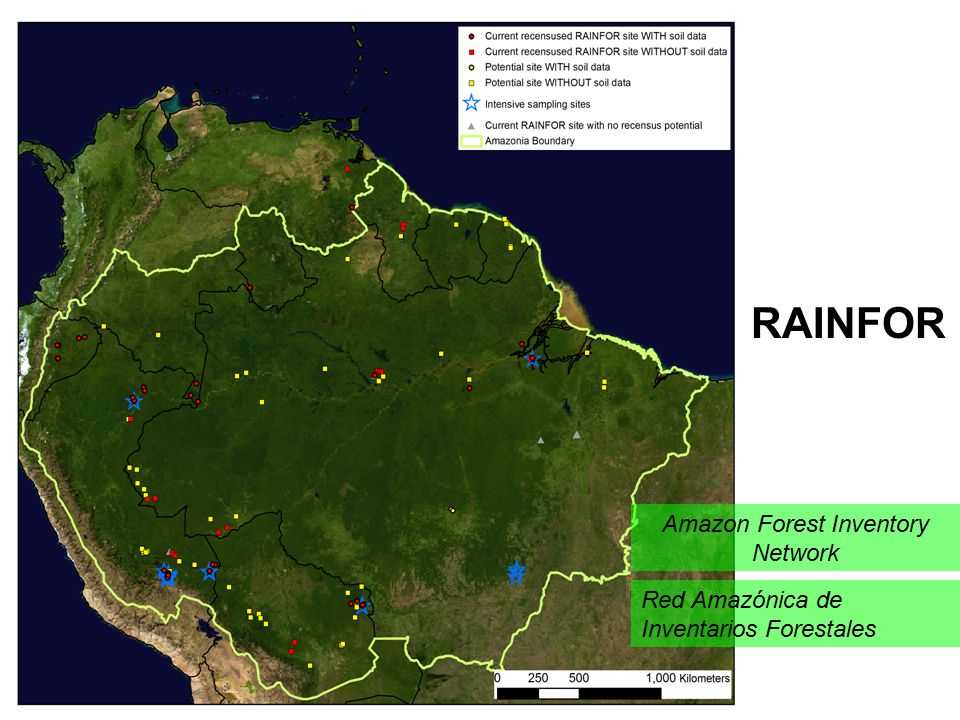 Amazon Forest Inventory Network