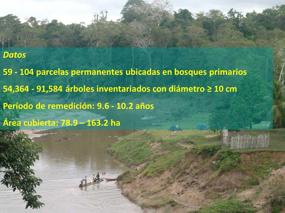 59 - 104 parcelas permanentes ubicadas en bosques primarios