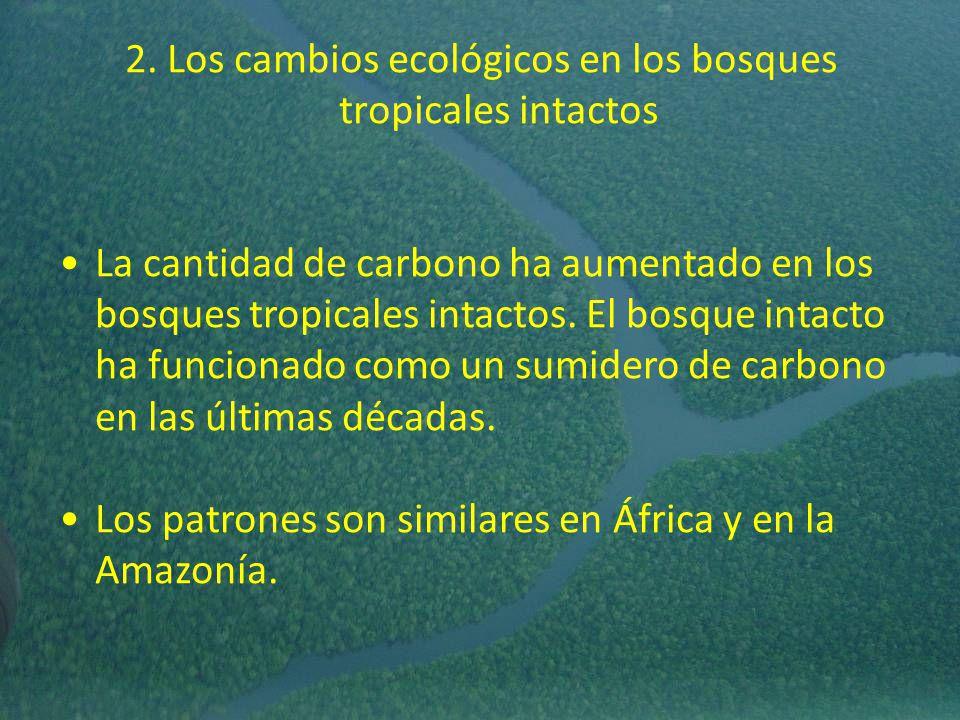 2. Los cambios ecológicos en los bosques tropicales intactos