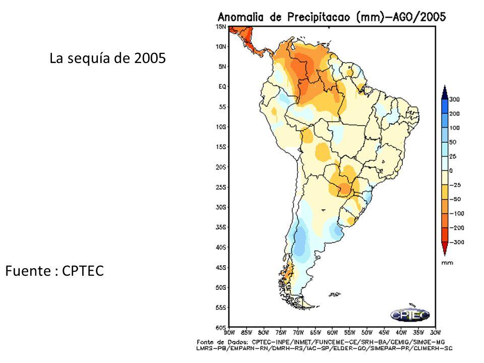 La sequía de 2005 Fuente : CPTEC