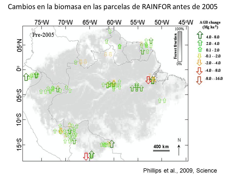 Cambios en la biomasa en las parcelas de RAINFOR antes de 2005