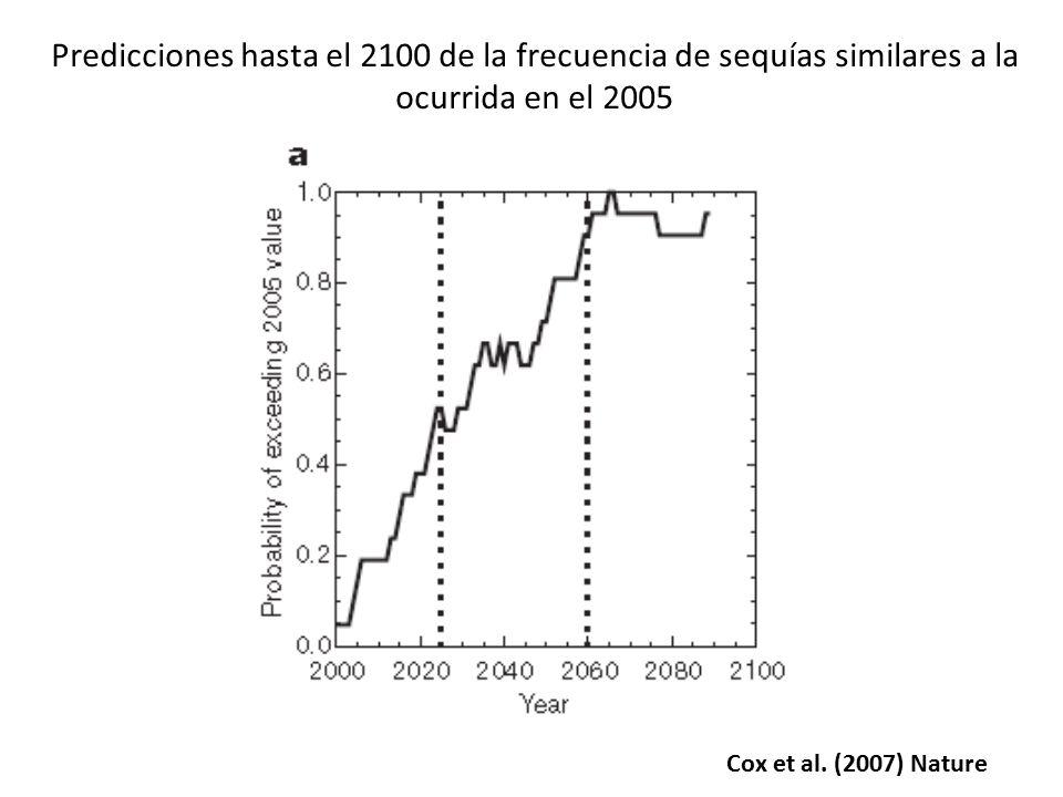 Predicciones hasta el 2100 de la frecuencia de sequías similares a la ocurrida en el 2005
