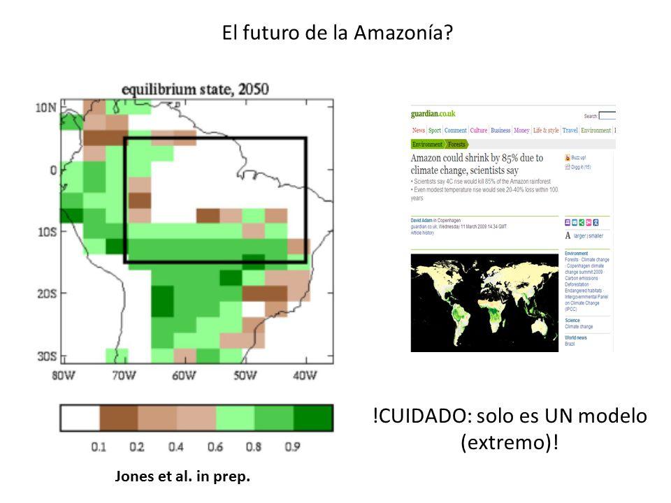 El futuro de la Amazonía
