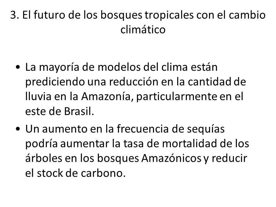 3. El futuro de los bosques tropicales con el cambio climático