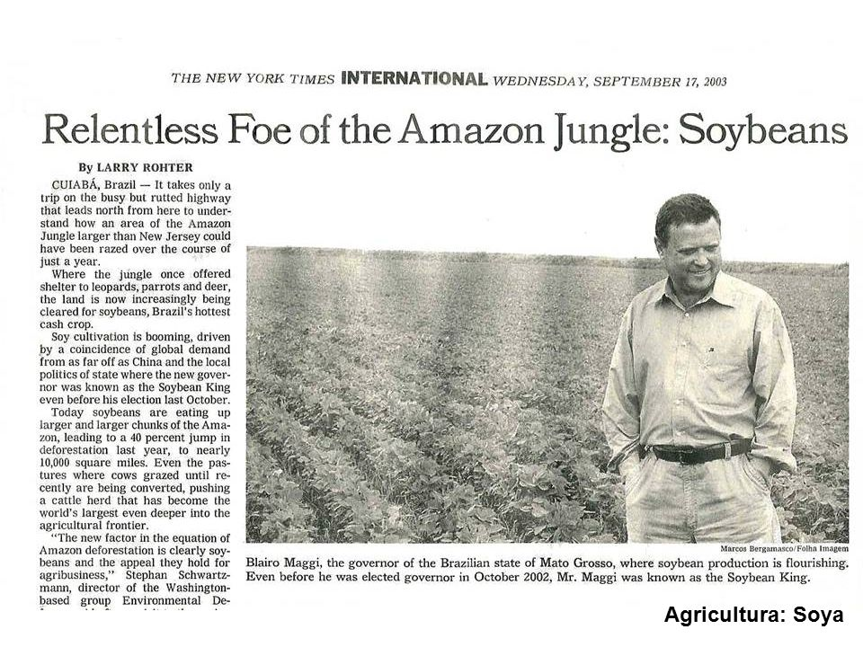 We hear a lot about soya bean plantations as well.