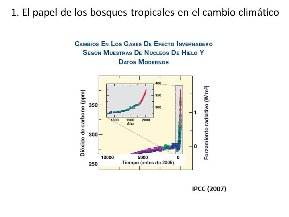 1. El papel de los bosques tropicales en el cambio climático