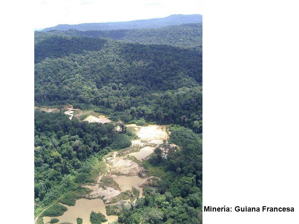 Minería: Guiana Francesa