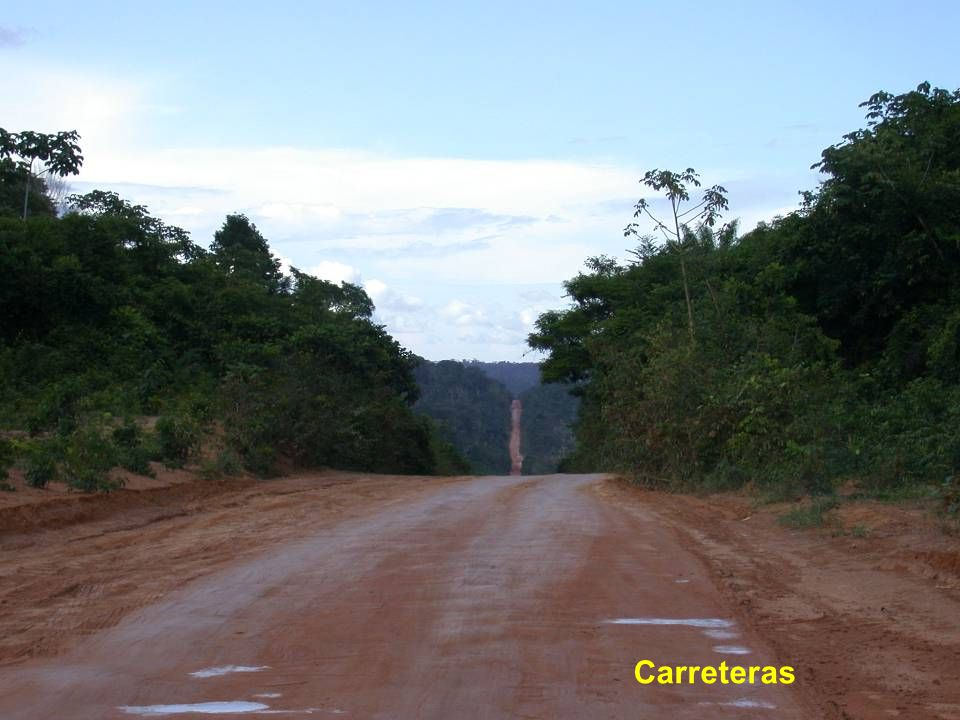 Road building is a pervasive threat across Amazonia
