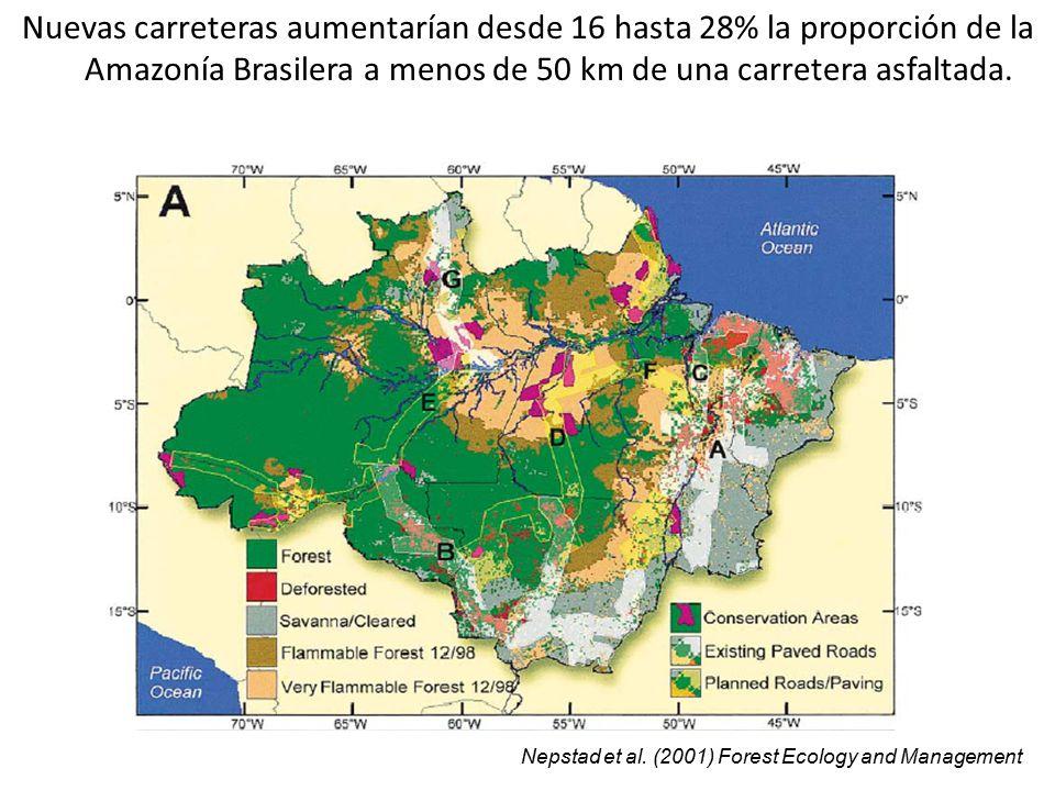 Nuevas carreteras aumentarían desde 16 hasta 28% la proporción de la Amazonía Brasilera a menos de 50 km de una carretera asfaltada.