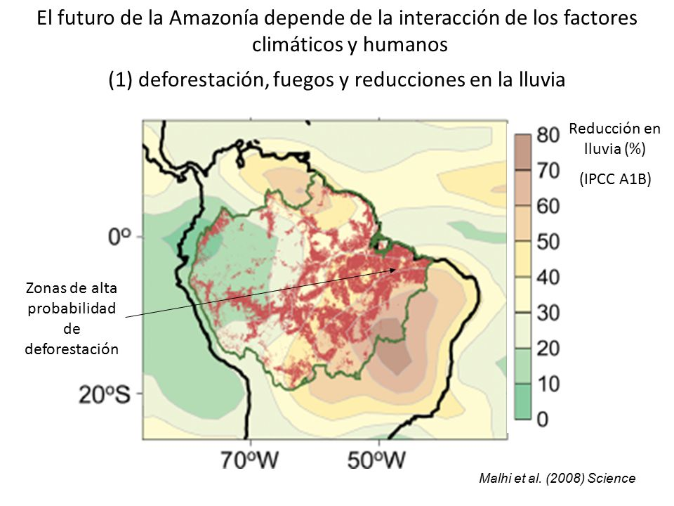 (1) deforestación, fuegos y reducciones en la lluvia