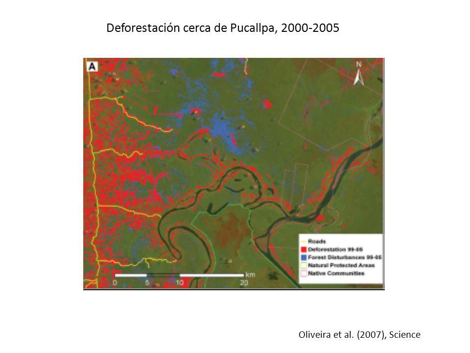 Deforestación cerca de Pucallpa, 2000-2005