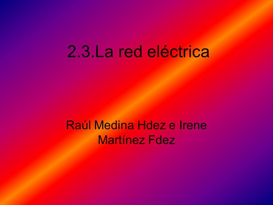 Raúl Medina Hdez e Irene Martínez Fdez