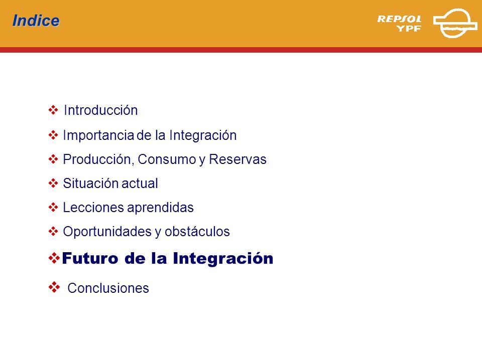 Futuro de la Integración Conclusiones