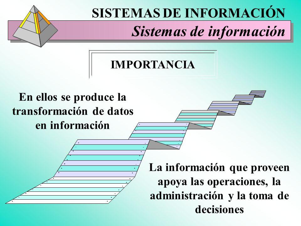 En ellos se produce la transformación de datos en información