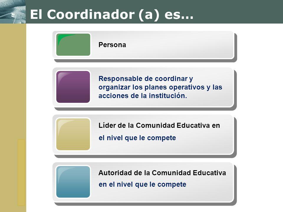 El Coordinador (a) es… Persona
