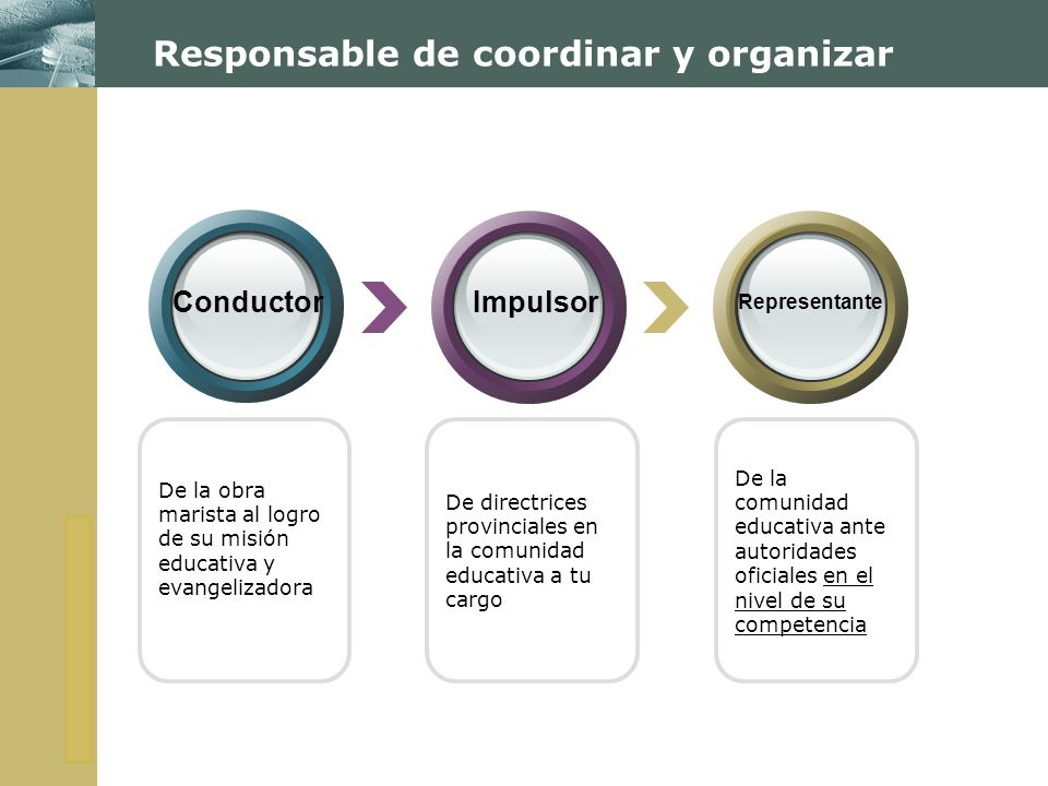 Responsable de coordinar y organizar