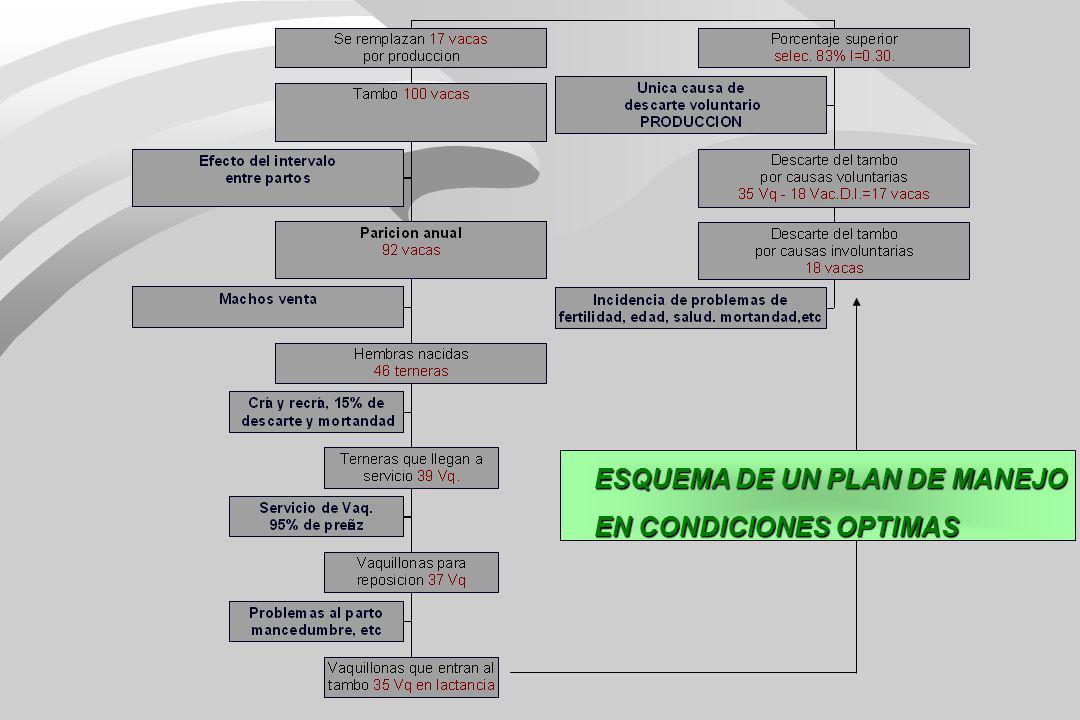 ESQUEMA DE UN PLAN DE MANEJO