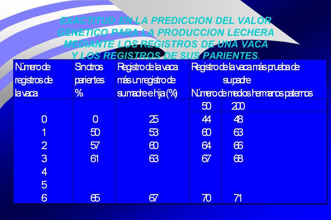 EXACTITUD EN LA PREDICCION DEL VALOR GENETICO PARA LA PRODUCCION LECHERA MEDIANTE LOS REGISTROS DE UNA VACA Y LOS REGISTROS DE SUS PARIENTES.