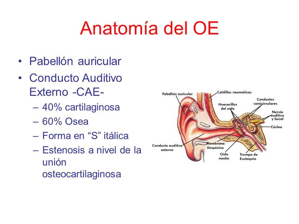 Anatomía del OE Pabellón auricular Conducto Auditivo Externo -CAE-