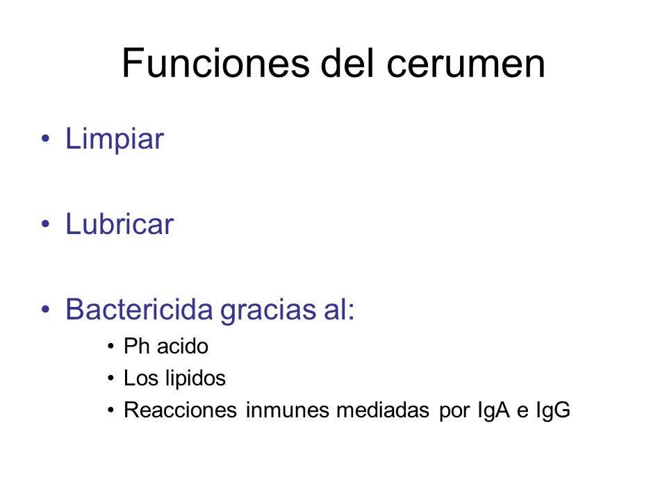 Funciones del cerumen Limpiar Lubricar Bactericida gracias al: