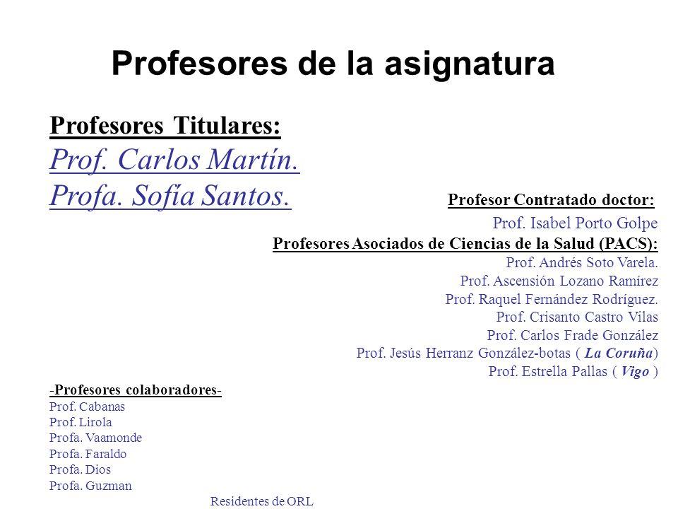 Profesores de la asignatura