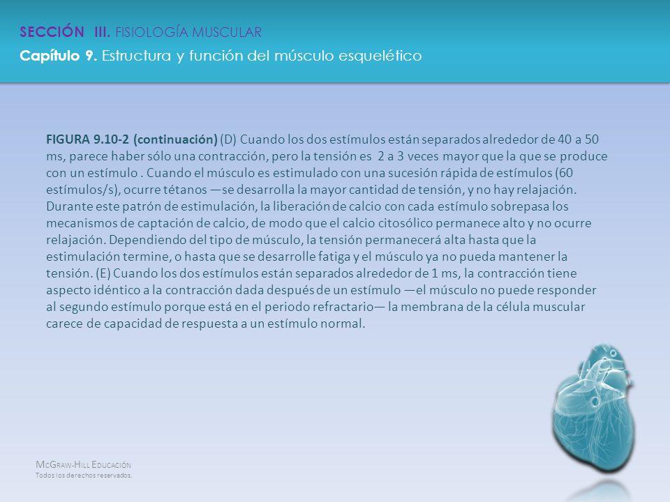 Magnífico Mcgraw Anatomía Colina Y Edición 13 De La Fisiología ...