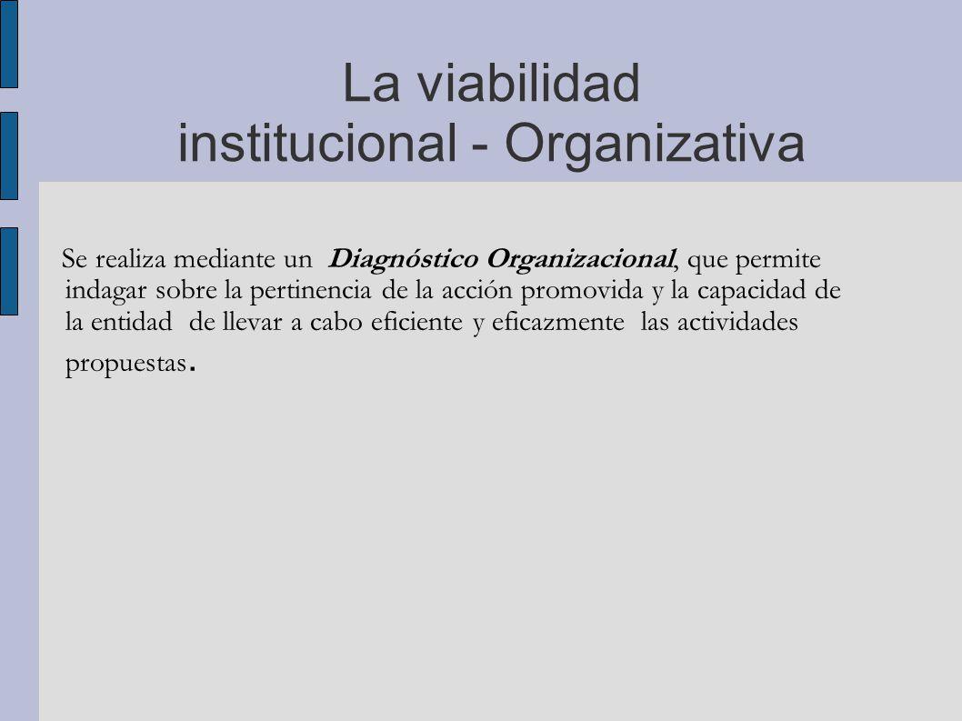 La viabilidad institucional - Organizativa
