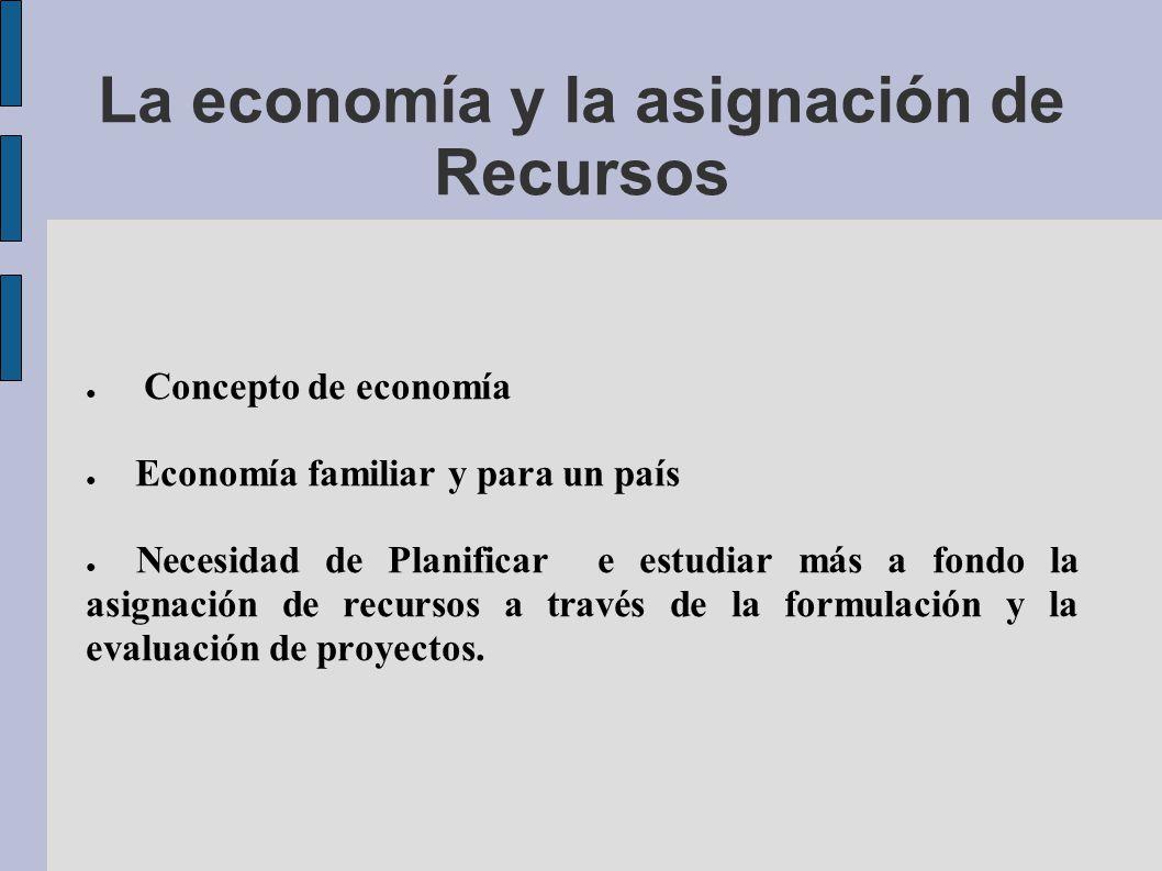 La economía y la asignación de Recursos