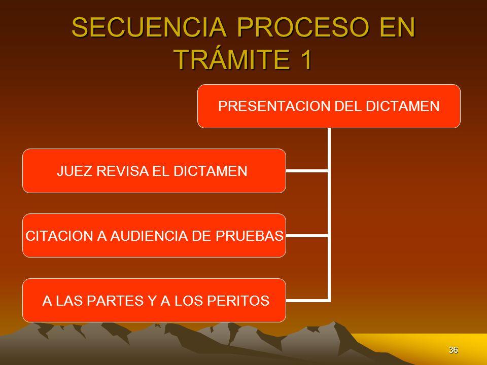 SECUENCIA PROCESO EN TRÁMITE 1