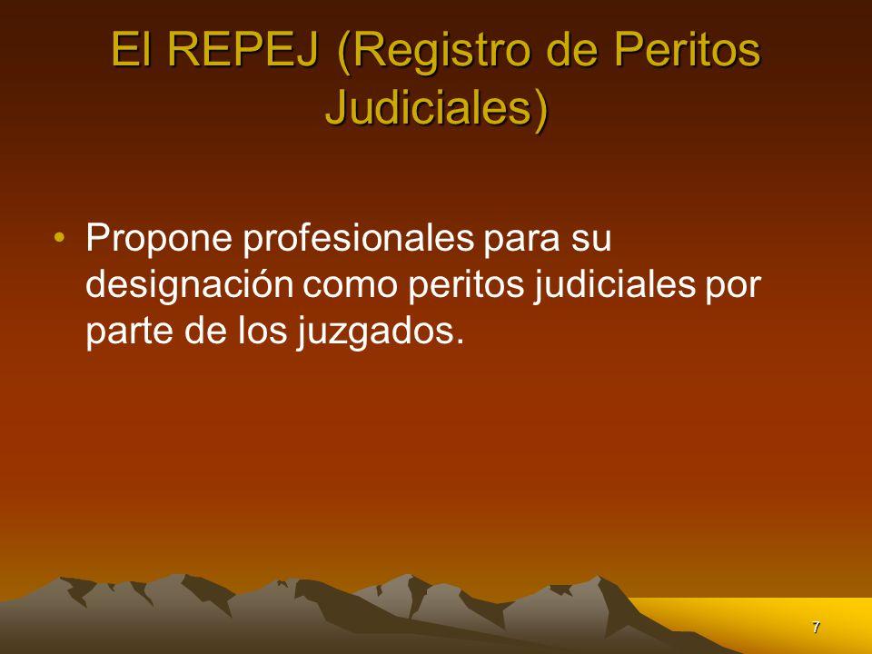 El REPEJ (Registro de Peritos Judiciales)