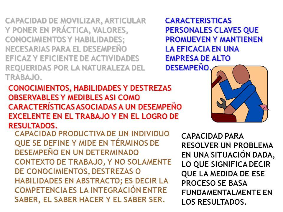 CAPACIDAD DE MOVILIZAR, ARTICULAR Y PONER EN PRÁCTICA, VALORES, CONOCIMIENTOS Y HABILIDADES; NECESARIAS PARA EL DESEMPEÑO EFICAZ Y EFICIENTE DE ACTIVIDADES REQUERIDAS POR LA NATURALEZA DEL TRABAJO.