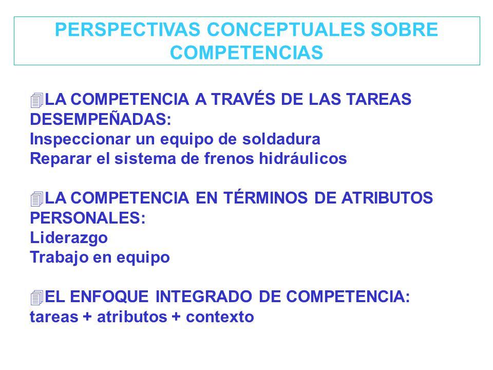 PERSPECTIVAS CONCEPTUALES SOBRE COMPETENCIAS