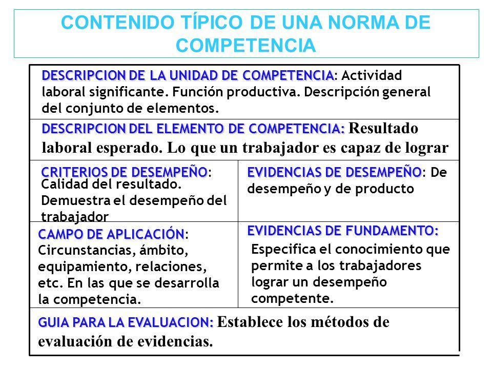 CONTENIDO TÍPICO DE UNA NORMA DE COMPETENCIA