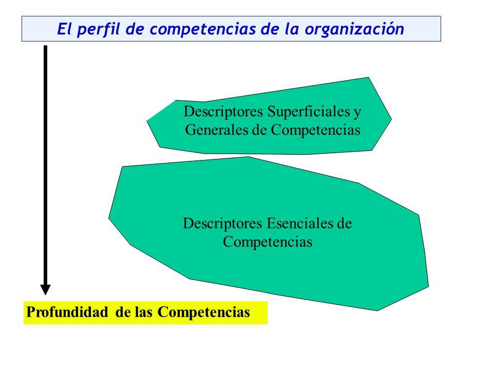 El perfil de competencias de la organización