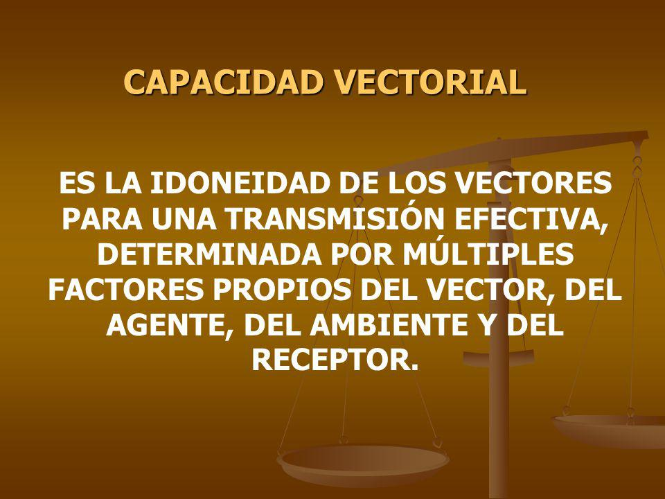 CAPACIDAD VECTORIAL