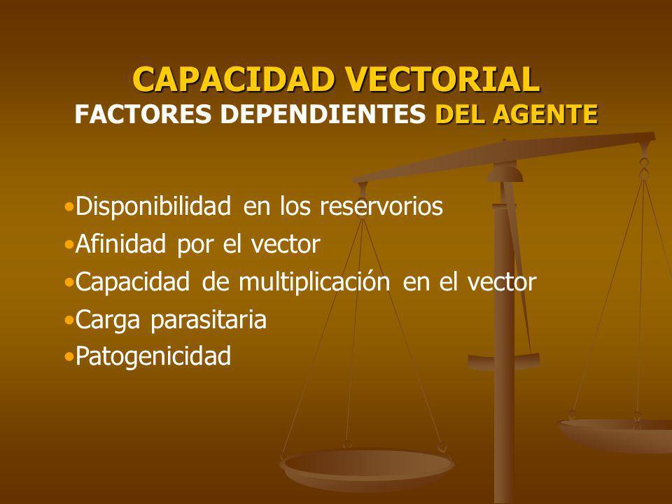 CAPACIDAD VECTORIAL FACTORES DEPENDIENTES DEL AGENTE