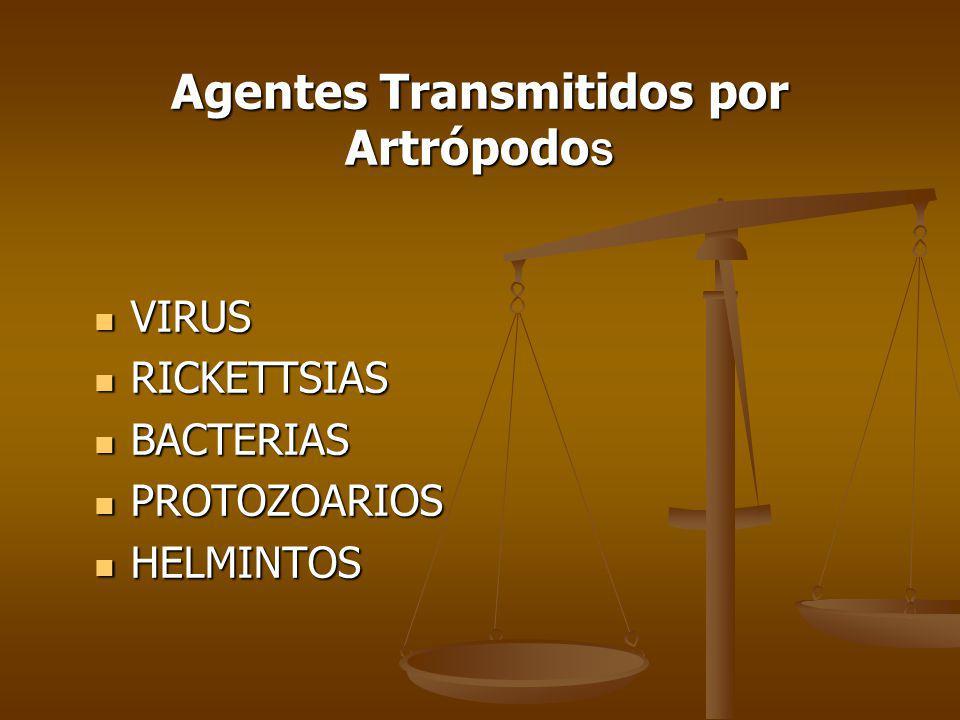 Agentes Transmitidos por Artrópodos