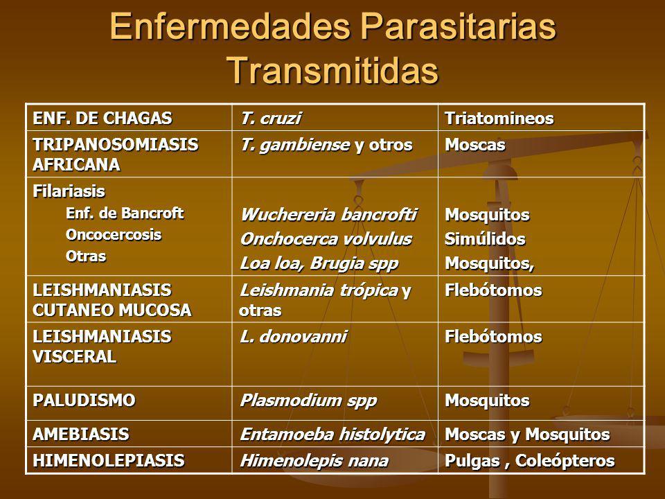 Enfermedades Parasitarias Transmitidas