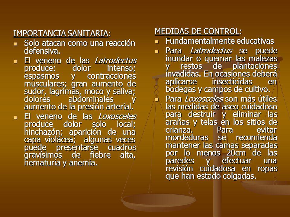 MEDIDAS DE CONTROL: Fundamentalmente educativas.